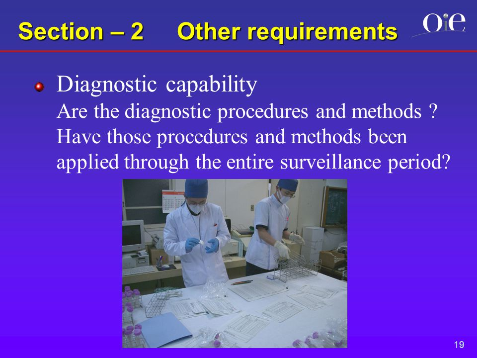 19 Section – 2 Other requirements Diagnostic capability Are the diagnostic procedures and methods .