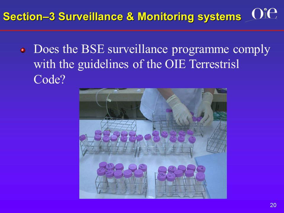 20 Section–3 Surveillance & Monitoring systems Does the BSE surveillance programme comply with the guidelines of the OIE Terrestrisl Code