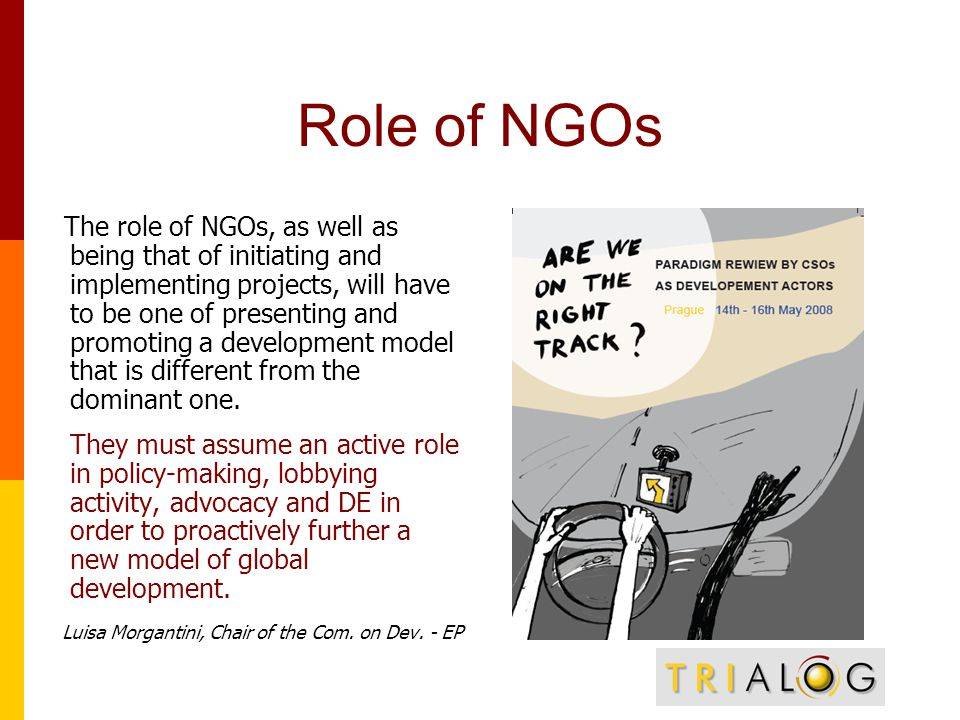 Role of NGOs The role of NGOs, as well as being that of initiating and implementing projects, will have to be one of presenting and promoting a development model that is different from the dominant one.