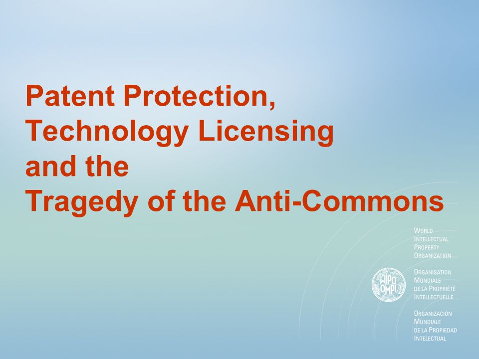 Patent Protection, Technology Licensing and the Tragedy of the Anti-Commons
