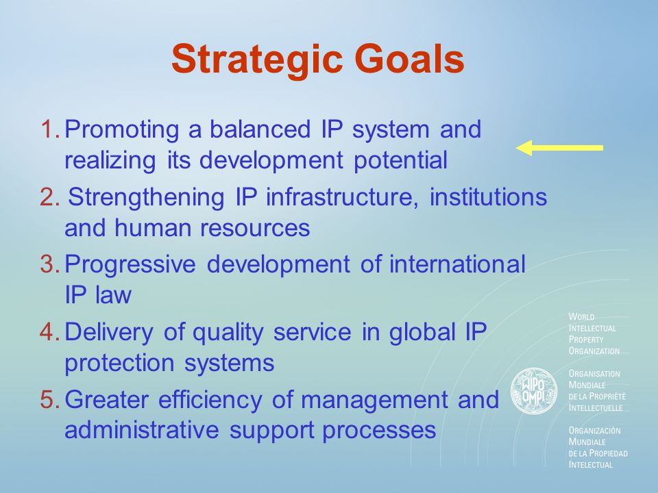 Strategic Goals 1.Promoting a balanced IP system and realizing its development potential 2. Strengthening IP infrastructure, institutions and human re