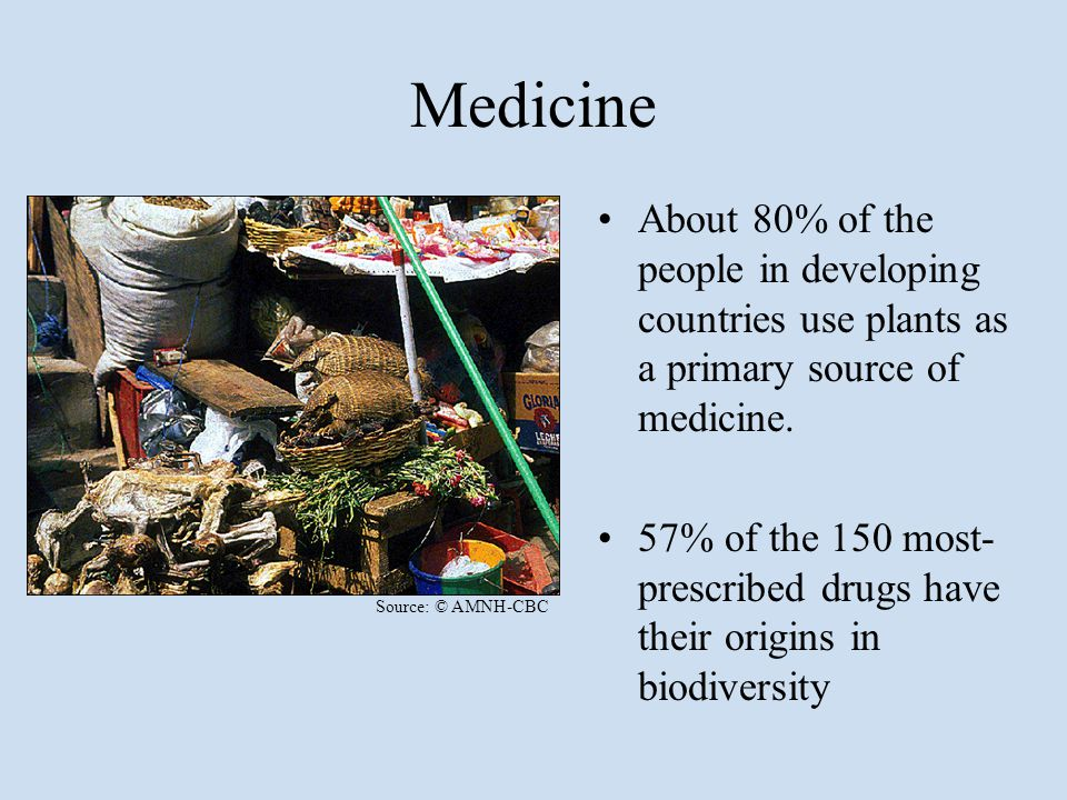 Medicine About 80% of the people in developing countries use plants as a primary source of medicine. 57% of the 150 most- prescribed drugs have their