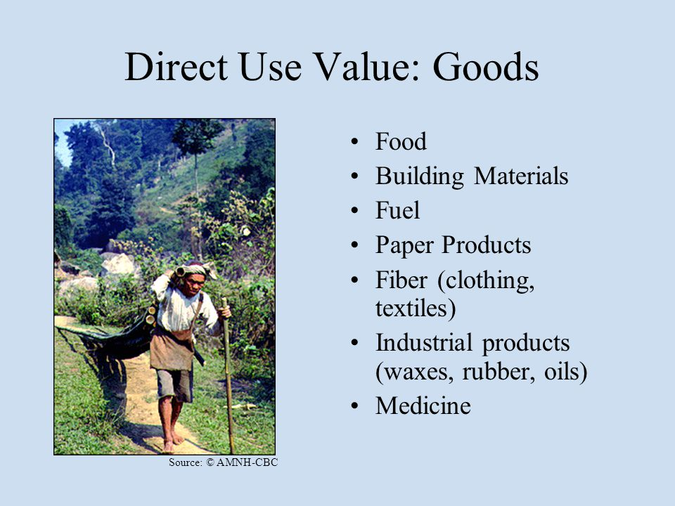 Direct Use Value: Goods Food Building Materials Fuel Paper Products Fiber (clothing, textiles) Industrial products (waxes, rubber, oils) Medicine Sour