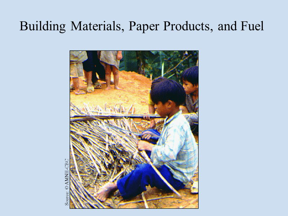 Building Materials, Paper Products, and Fuel Source: © AMNH-CBC