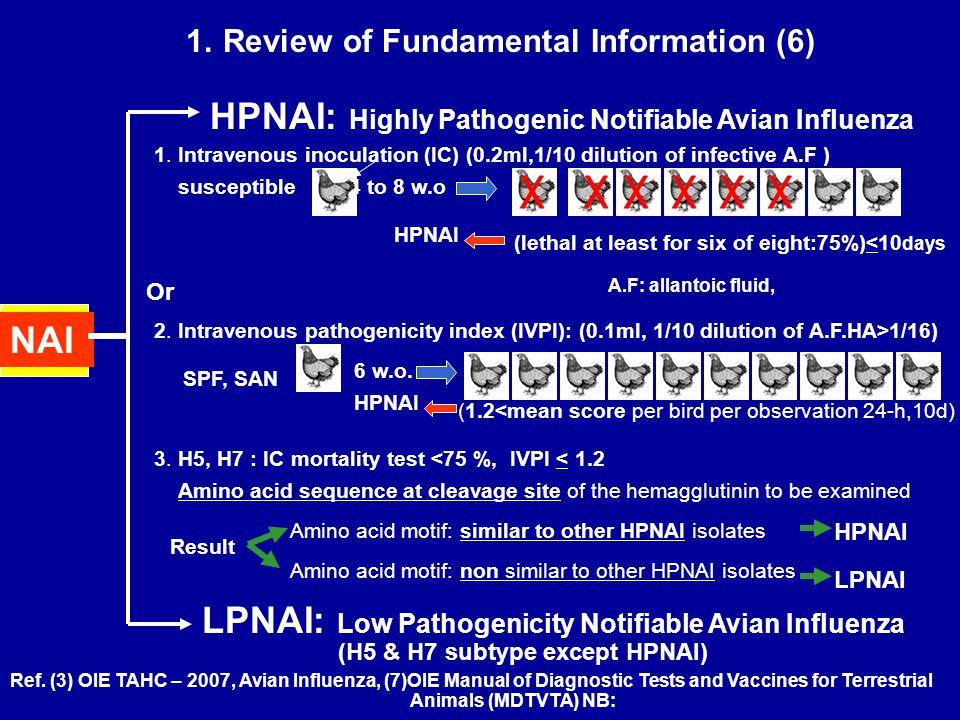 1. Review of Fundamental Information (6) NAI HPNAI: Highly Pathogenic Notifiable Avian Influenza LPNAI: Low Pathogenicity Notifiable Avian Influenza 1