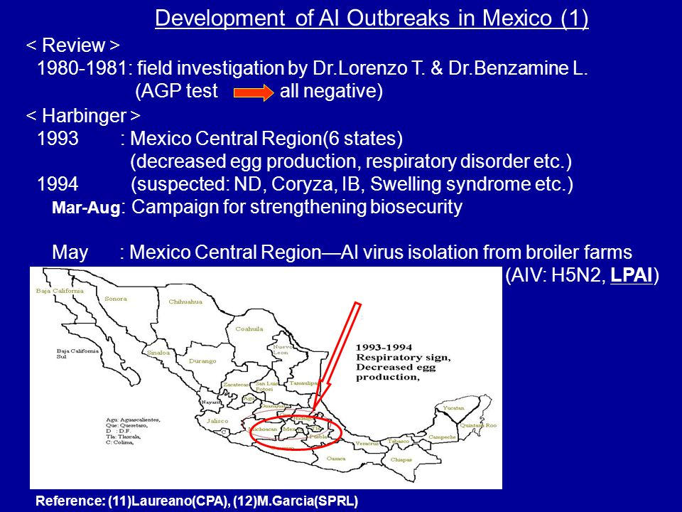 Development of AI Outbreaks in Mexico (1) Reference: (11)Laureano(CPA), (12)M.Garcia(SPRL) 1980-1981: field investigation by Dr.Lorenzo T.