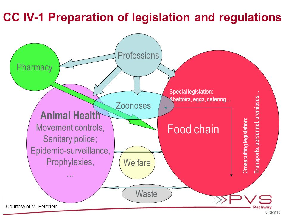 Key issues to assess during PVS evaluations Internal quality ( a little … ) External quality ( a lot … ) Scope (animal health, public health, food safety, welfare,..) Definitions (vertebrates, invertebrates, birds, mammals) Competent authorities and chain of command Penal and administrative sanctions Legal authority of inspectors to …..inspect.