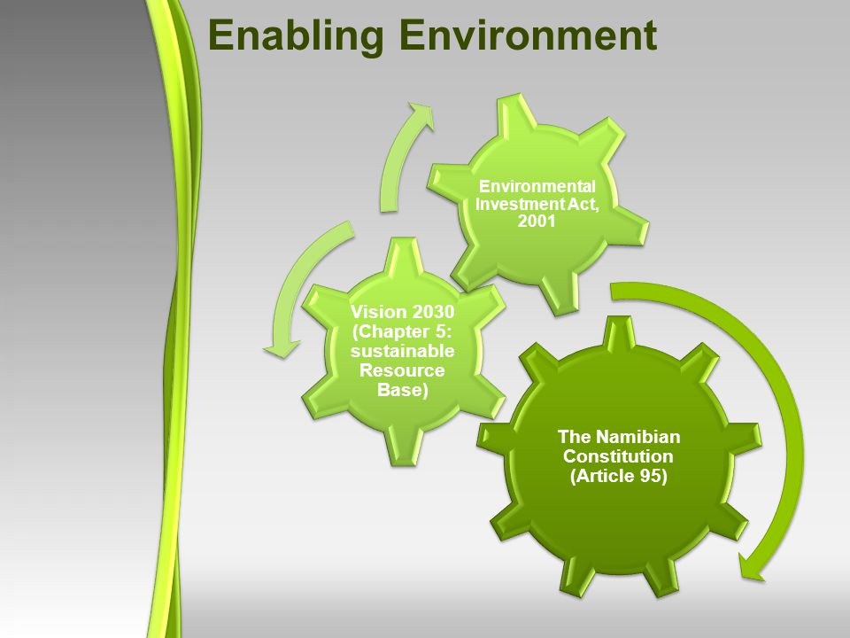 Enabling Environment The Namibian Constitution (Article 95) Vision 2030 (Chapter 5: sustainable Resource Base) Environmental Investment Act, 2001