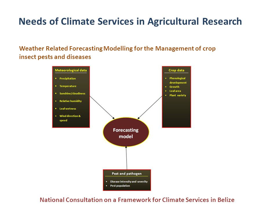 Needs of Climate Services in Agricultural Research Weather Related Forecasting Modelling for the Management of crop insect pests and diseases National