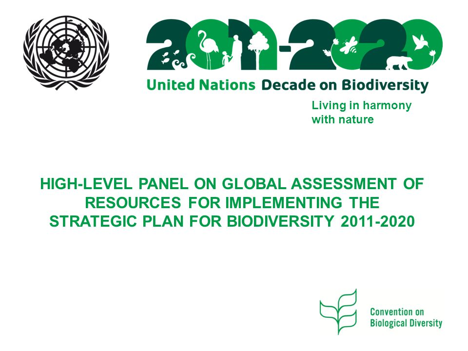 Living in harmony with nature HIGH-LEVEL PANEL ON GLOBAL ASSESSMENT OF RESOURCES FOR IMPLEMENTING THE STRATEGIC PLAN FOR BIODIVERSITY 2011-2020