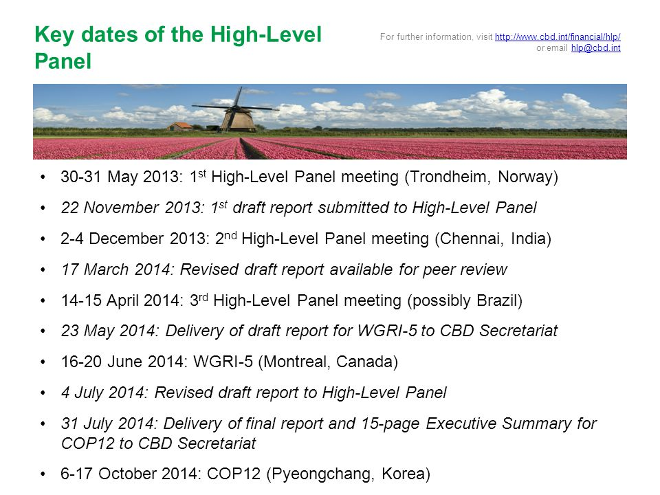 30-31 May 2013: 1 st High-Level Panel meeting (Trondheim, Norway) 22 November 2013: 1 st draft report submitted to High-Level Panel 2-4 December 2013: