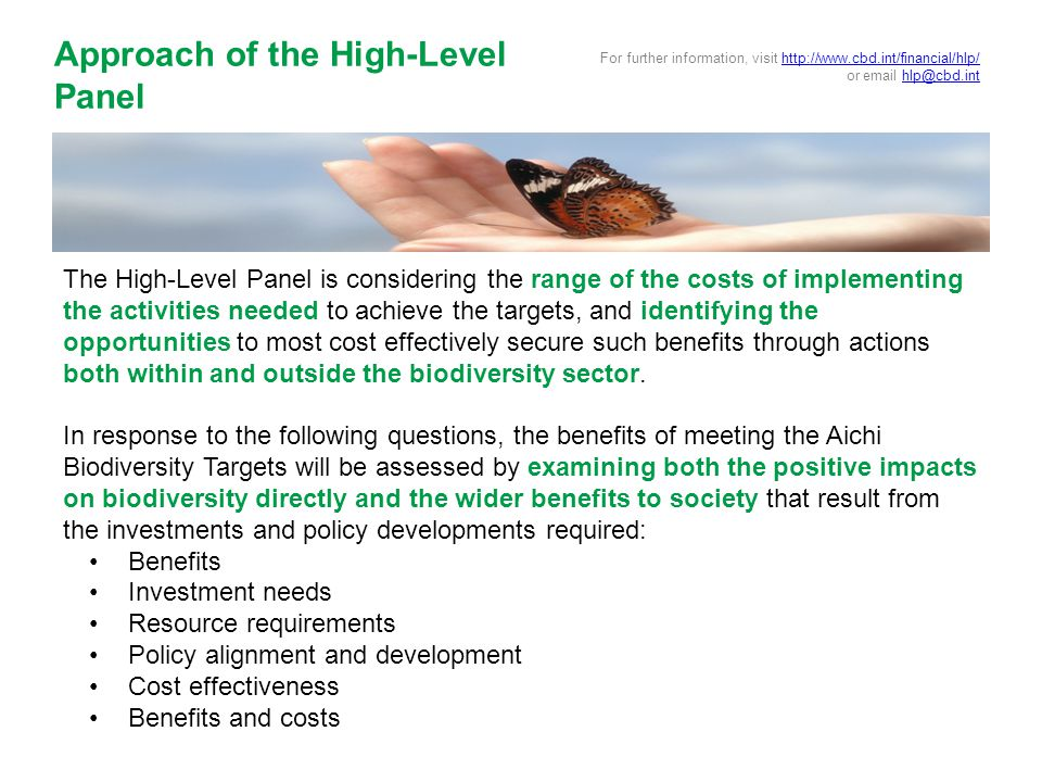 The High-Level Panel is considering the range of the costs of implementing the activities needed to achieve the targets, and identifying the opportunities to most cost effectively secure such benefits through actions both within and outside the biodiversity sector.