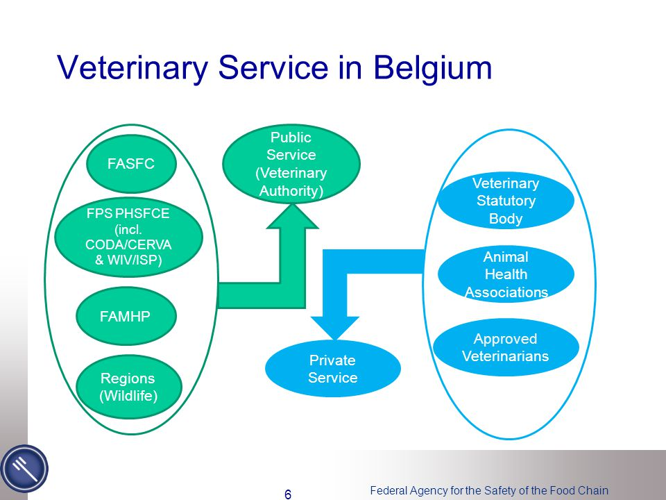 Federal Agency for the Safety of the Food Chain Veterinary Service in Belgium FASFC FPS PHSFCE (incl.