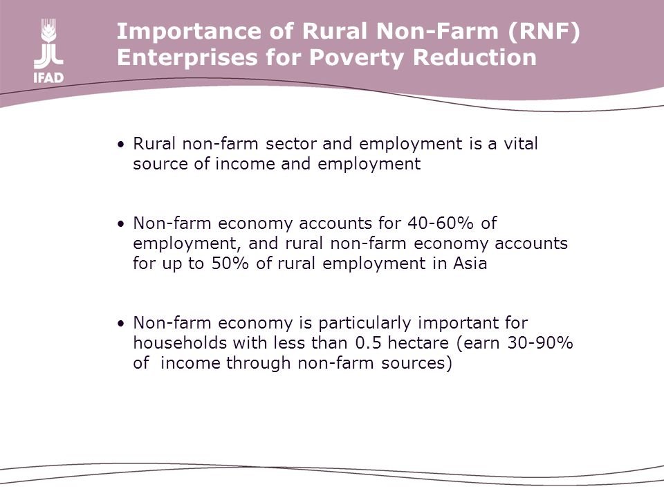 Importance of Rural Non-Farm (RNF) Enterprises for Poverty Reduction Rural non-farm sector and employment is a vital source of income and employment Non-farm economy accounts for 40-60% of employment, and rural non-farm economy accounts for up to 50% of rural employment in Asia Non-farm economy is particularly important for households with less than 0.5 hectare (earn 30-90% of income through non-farm sources)