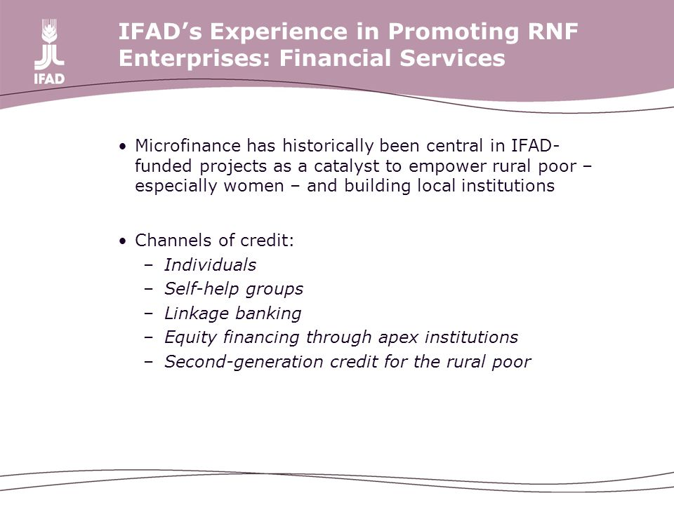 IFAD's Experience in Promoting RNF Enterprises: Financial Services Microfinance has historically been central in IFAD- funded projects as a catalyst to empower rural poor – especially women – and building local institutions Channels of credit: –Individuals –Self-help groups –Linkage banking –Equity financing through apex institutions –Second-generation credit for the rural poor
