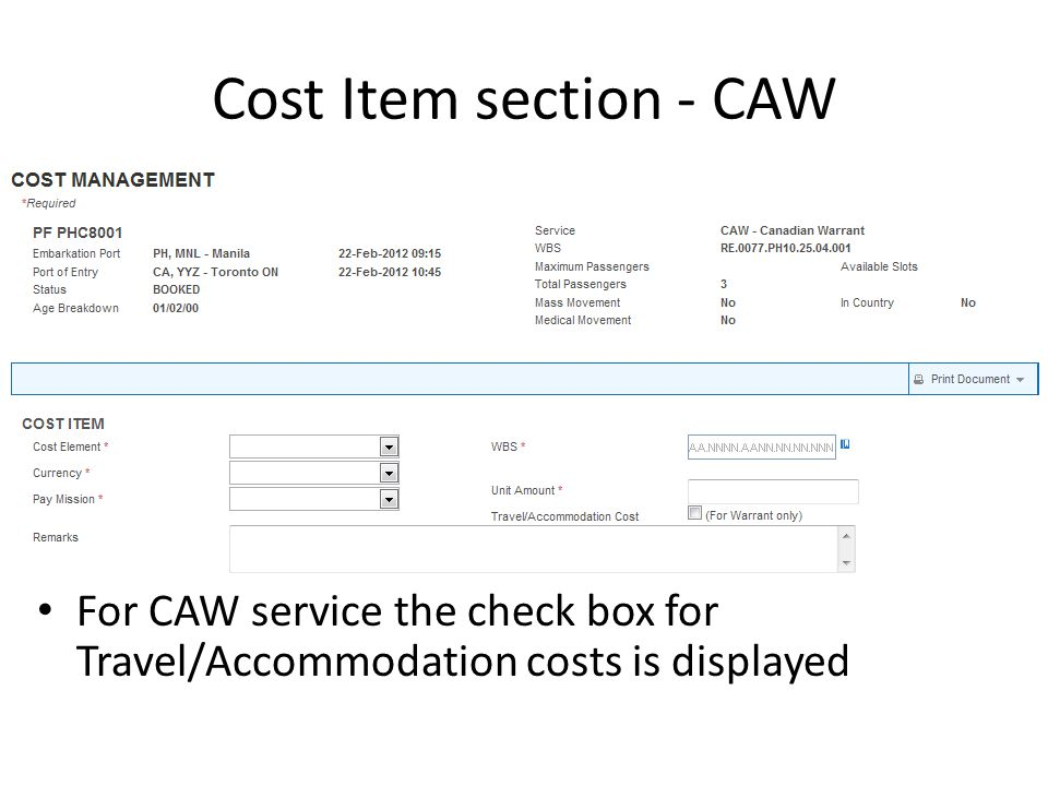Cost Item section - CAW For CAW service the check box for Travel/Accommodation costs is displayed