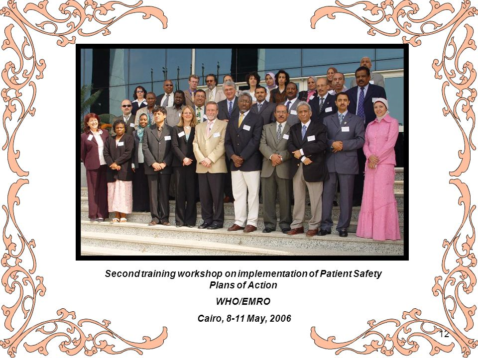 12 Second training workshop on implementation of Patient Safety Plans of Action WHO/EMRO Cairo, 8-11 May, 2006