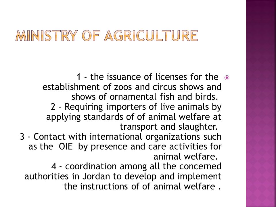  GAM is interested in the application of animal welfare standards in the following areas: 1 - Department of slaughterhouses: where the workers of slaughterhouses applying the principles of of animal welfare at all stages of the slaughter of animals as well as training of personnel at deferent levels and the development of infrastructure and facilities design of slaughterhouse to comply with international standards for animal welfare