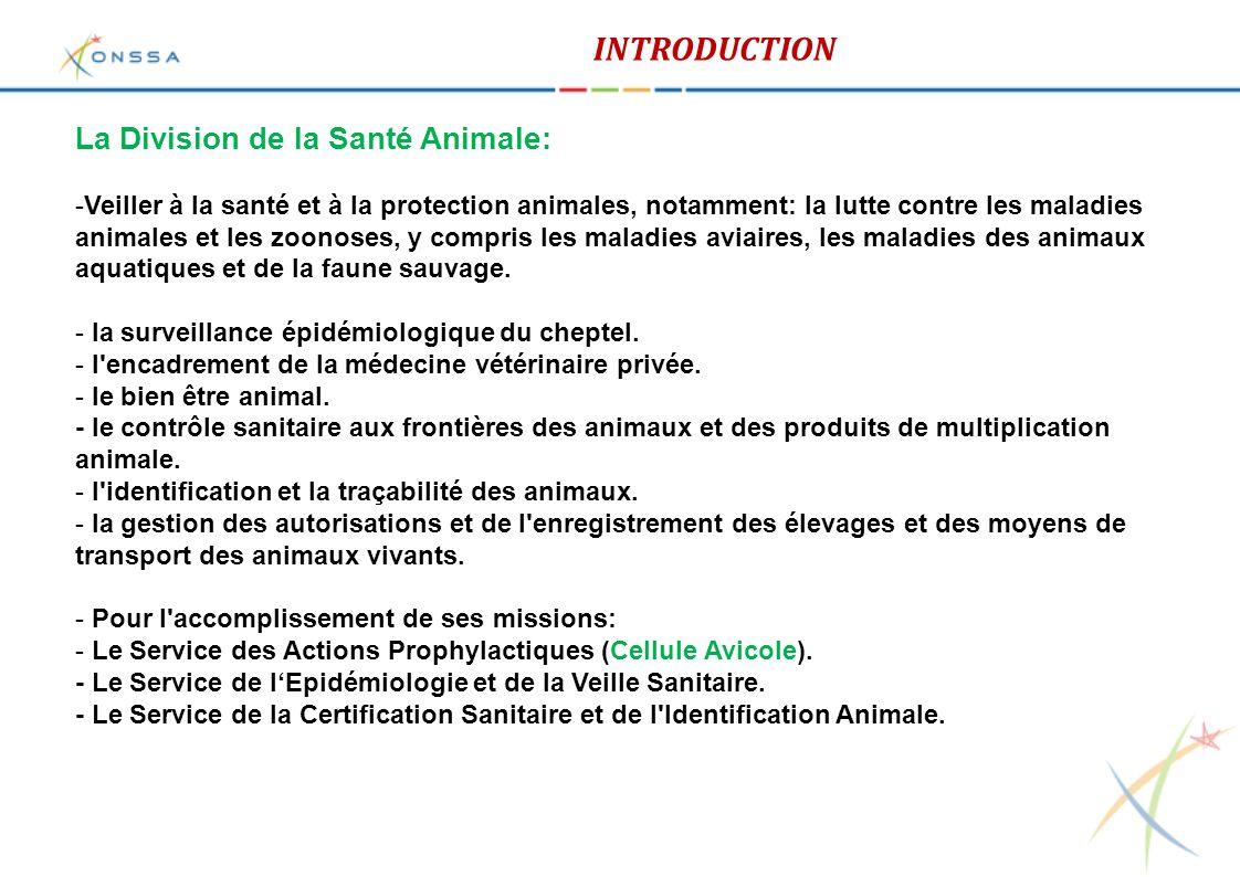 Secteur avicole au Maroc: Approvisionnement - Le Maroc a arrêté d'importer les OAC et les poussins d'un jour type chaire respectivement depuis 2003 et 2002.