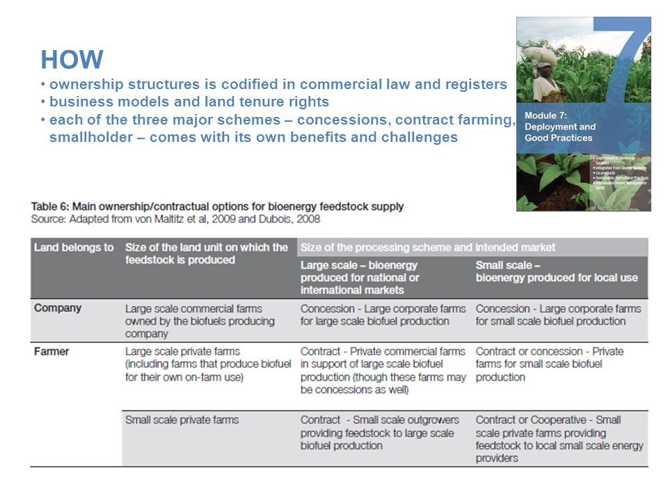 HOW ownership structures is codified in commercial law and registers business models and land tenure rights each of the three major schemes – concessi