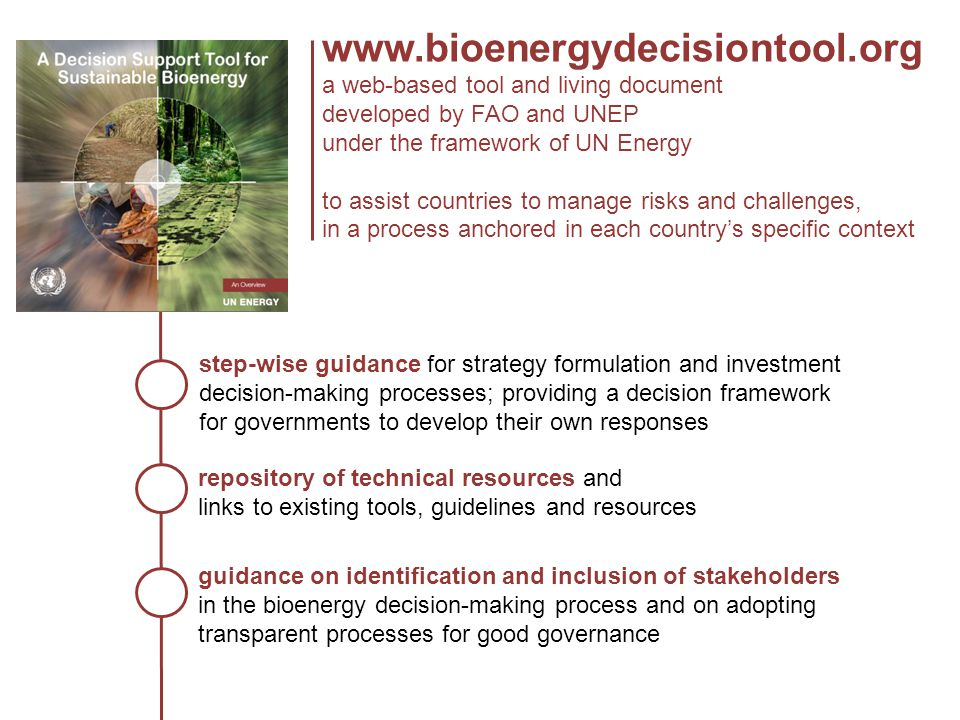 A National Strategy Decision Tree Feedstocks and technologies Legal and policy frameworks