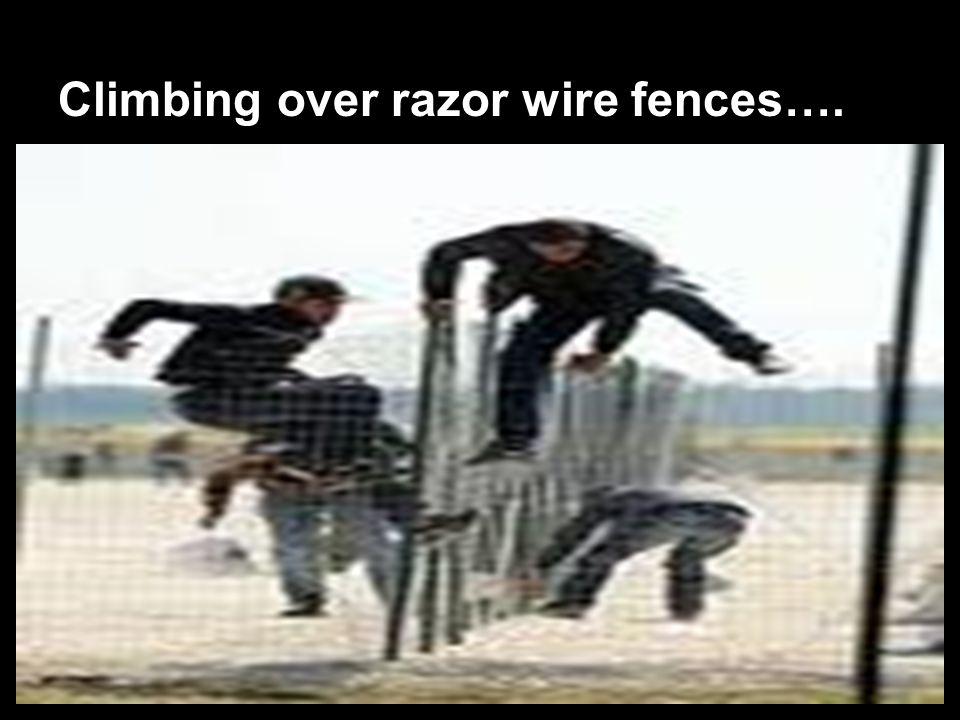 Climbing over razor wire fences….