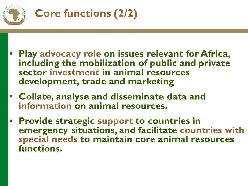 Core functions (2/2) Play advocacy role on issues relevant for Africa, including the mobilization of public and private sector investment in animal re