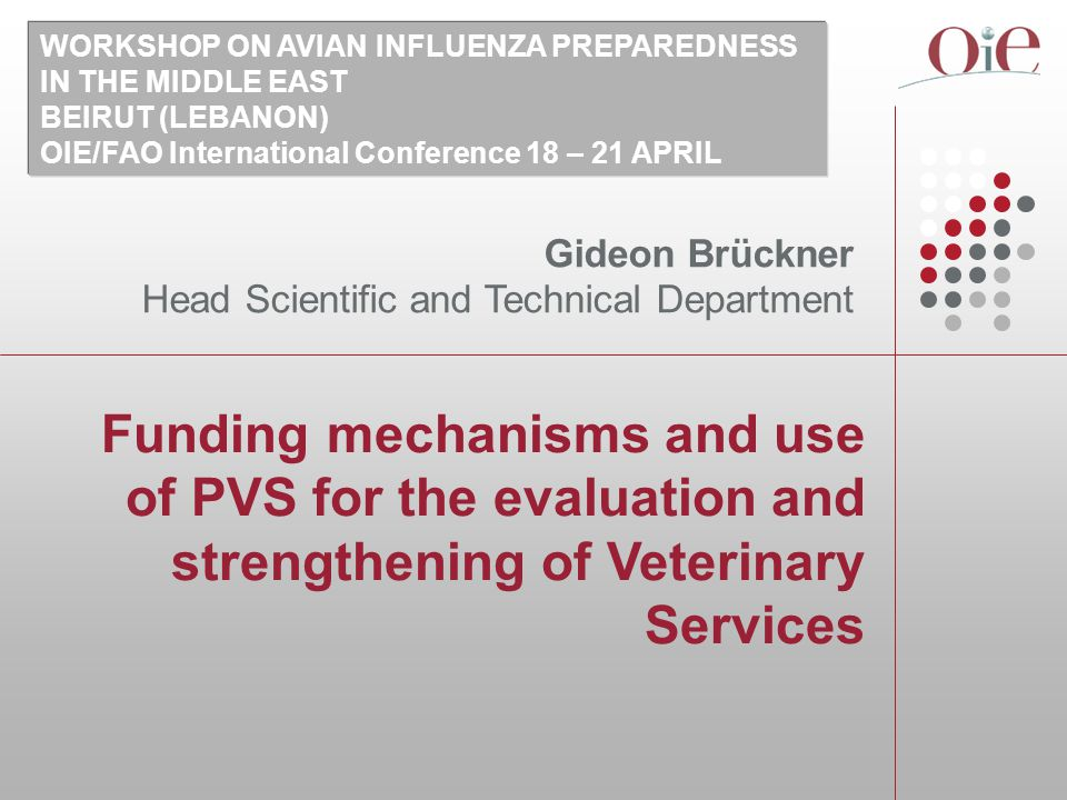 Funding mechanisms and use of PVS for the evaluation and strengthening of Veterinary Services Gideon Brückner Head Scientific and Technical Department WORKSHOP ON AVIAN INFLUENZA PREPAREDNESS IN THE MIDDLE EAST BEIRUT (LEBANON) OIE/FAO International Conference 18 – 21 APRIL