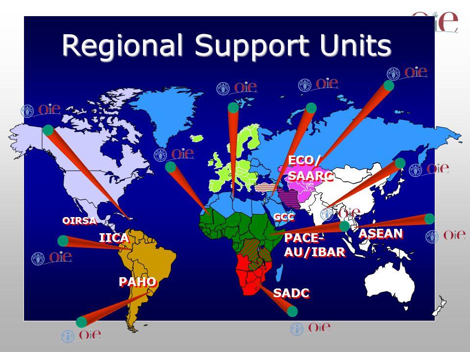 Regional Support Units PAHO OIRSA IICA ECO/ SAARC ECO/ SAARC PACE- AU/IBAR SADC GCC ASEAN