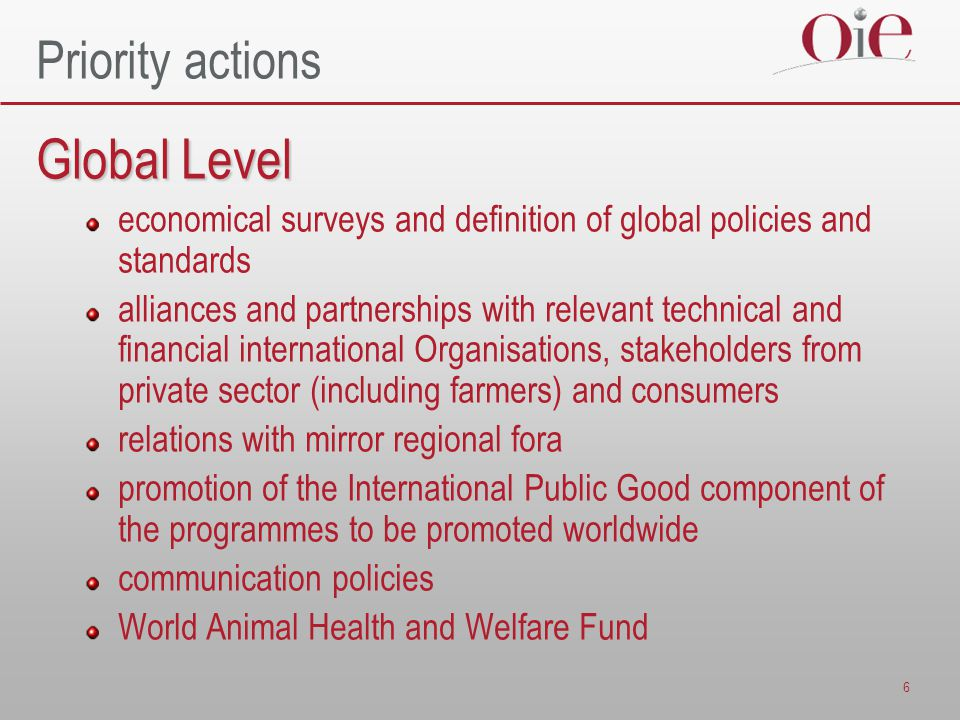 6 Priority actions Global Level economical surveys and definition of global policies and standards alliances and partnerships with relevant technical and financial international Organisations, stakeholders from private sector (including farmers) and consumers relations with mirror regional fora promotion of the International Public Good component of the programmes to be promoted worldwide communication policies World Animal Health and Welfare Fund
