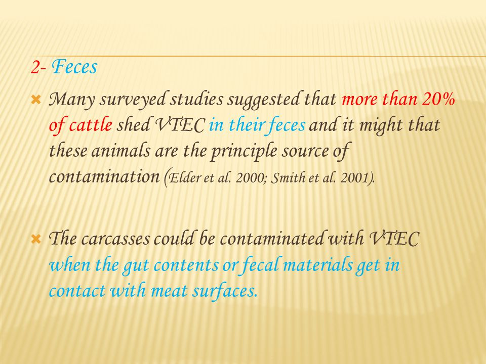 2- Feces  Many surveyed studies suggested that more than 20% of cattle shed VTEC in their feces and it might that these animals are the principle source of contamination ( Elder et al.