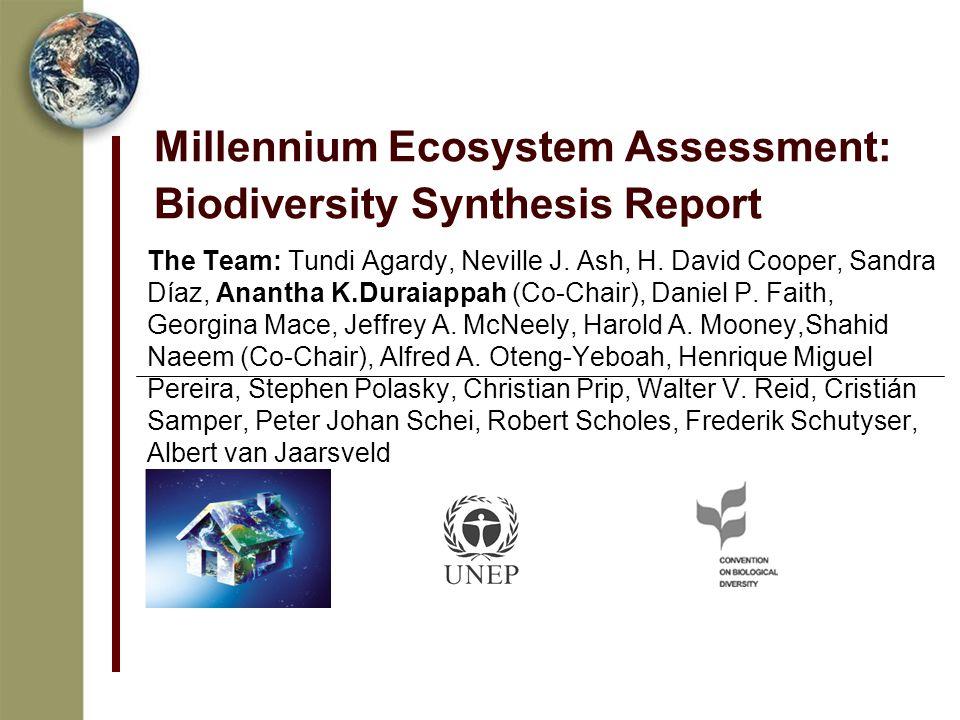 Millennium Ecosystem Assessment: Biodiversity Synthesis Report The Team: Tundi Agardy, Neville J.