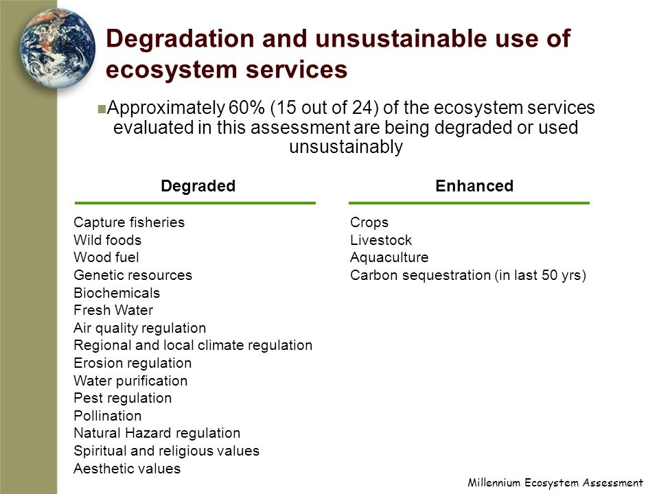 Millennium Ecosystem Assessment Degradation and unsustainable use of ecosystem services Approximately 60% (15 out of 24) of the ecosystem services evaluated in this assessment are being degraded or used unsustainably Degraded Capture fisheries Wild foods Wood fuel Genetic resources Biochemicals Fresh Water Air quality regulation Regional and local climate regulation Erosion regulation Water purification Pest regulation Pollination Natural Hazard regulation Spiritual and religious values Aesthetic values Enhanced Crops Livestock Aquaculture Carbon sequestration (in last 50 yrs)