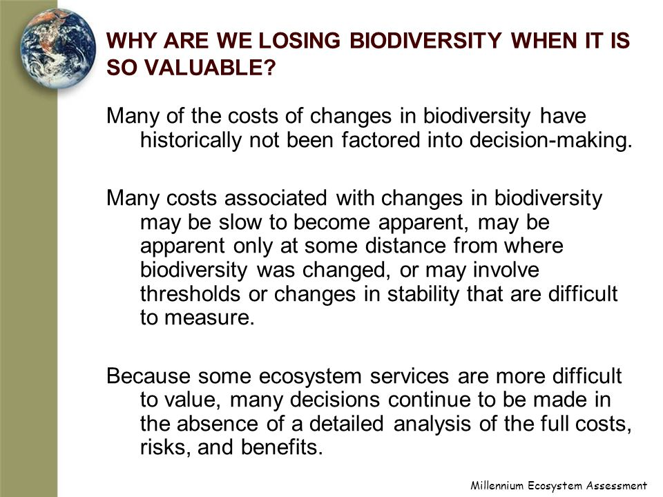 Millennium Ecosystem Assessment WHY ARE WE LOSING BIODIVERSITY WHEN IT IS SO VALUABLE.