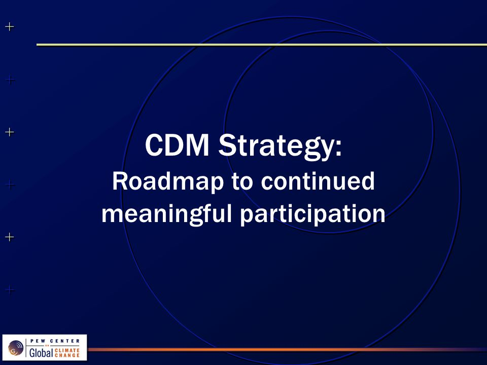 CDM Strategy: Roadmap to continued meaningful participation