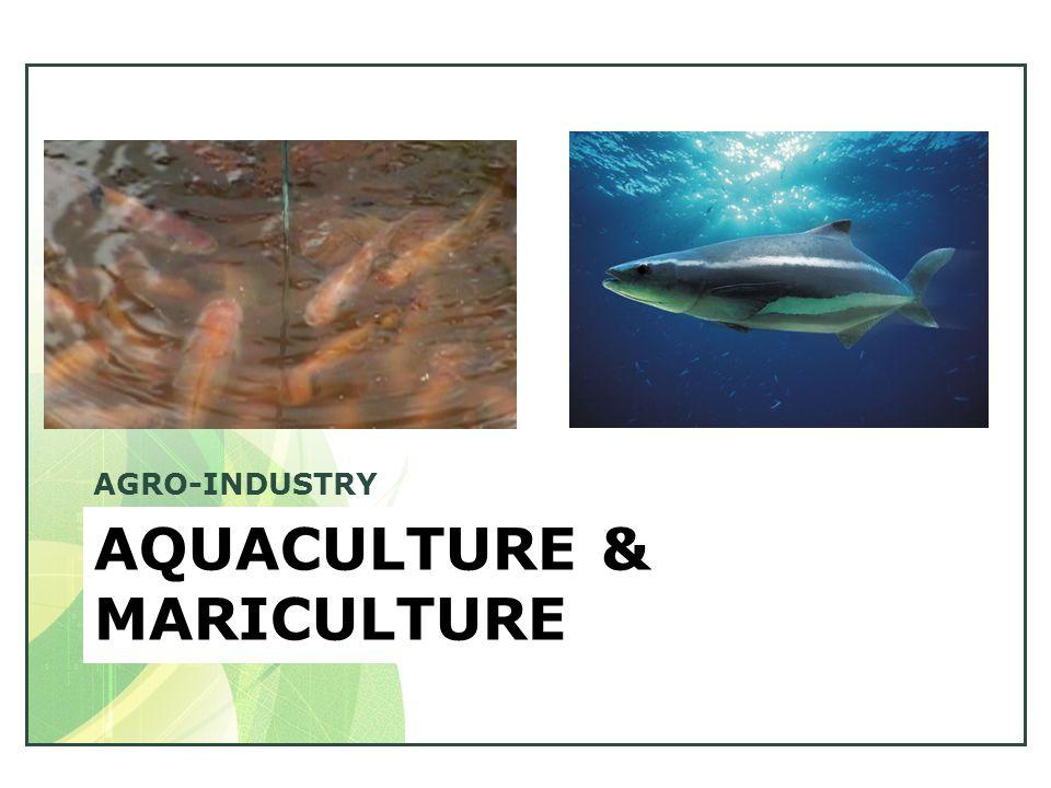 AQUACULTURE & MARICULTURE AGRO-INDUSTRY