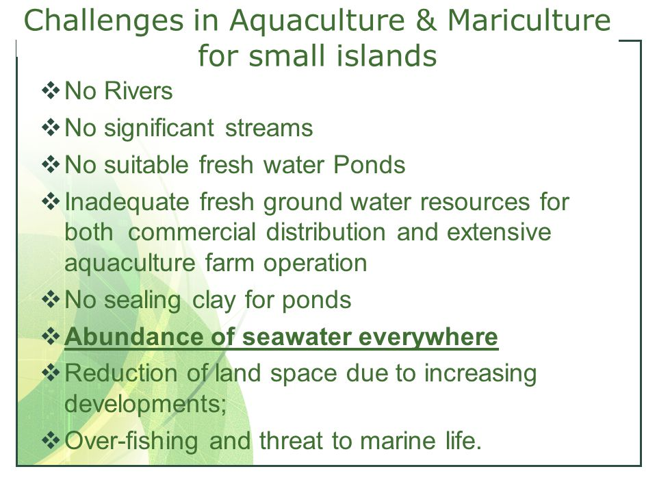 Challenges in Aquaculture & Mariculture for small islands  No Rivers  No significant streams  No suitable fresh water Ponds  Inadequate fresh ground water resources for both commercial distribution and extensive aquaculture farm operation  No sealing clay for ponds  Abundance of seawater everywhere  Reduction of land space due to increasing developments;  Over-fishing and threat to marine life.
