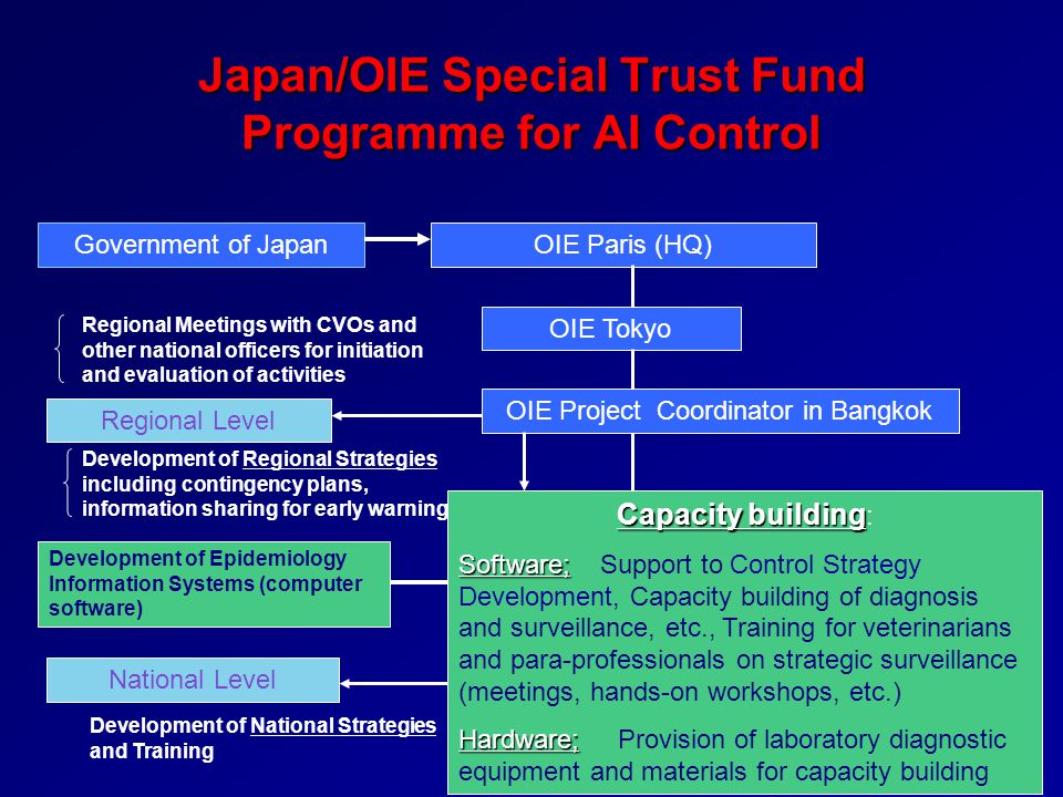 Japan/OIE Special Trust Fund Programme for AI Control Government of JapanOIE Paris (HQ) National Level Regional Level OIE Tokyo Capacity building Capa