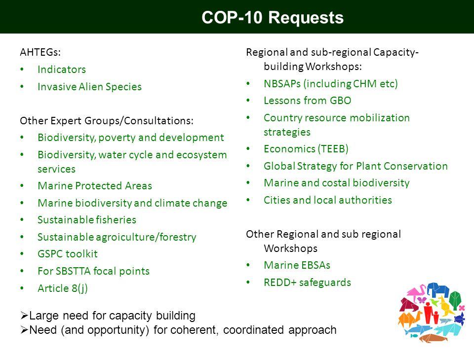 COP-10 Requests AHTEGs: Indicators Invasive Alien Species Other Expert Groups/Consultations: Biodiversity, poverty and development Biodiversity, water