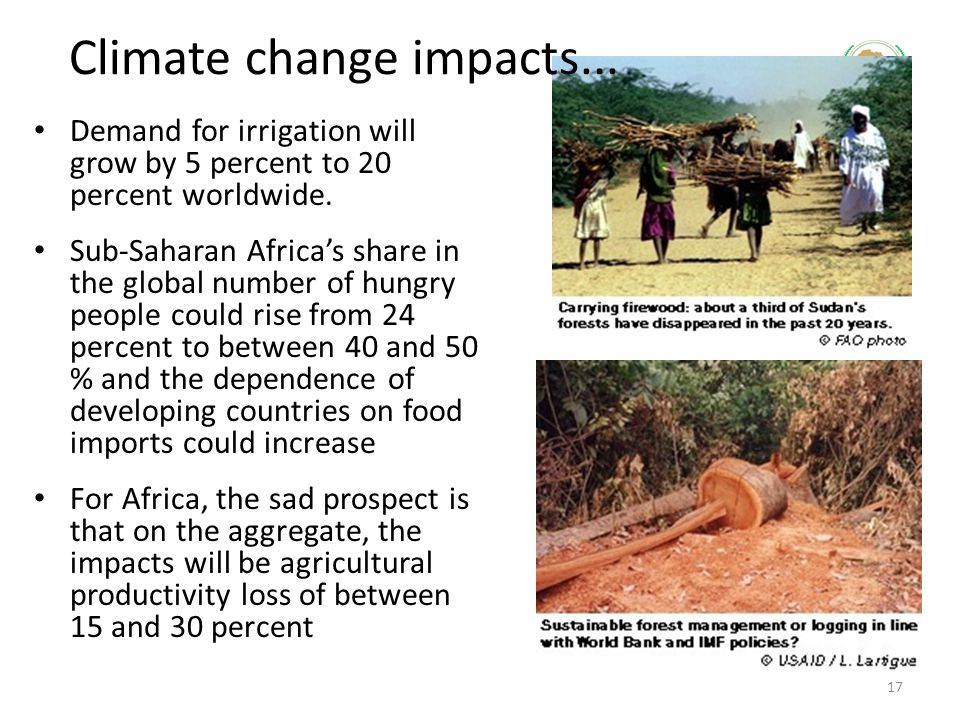 Demand for irrigation will grow by 5 percent to 20 percent worldwide. Sub-Saharan Africa's share in the global number of hungry people could rise from