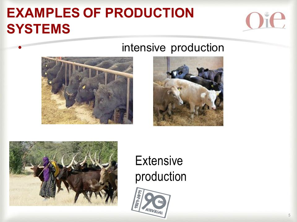 55 intensive production EXAMPLES OF PRODUCTION SYSTEMS Extensive production