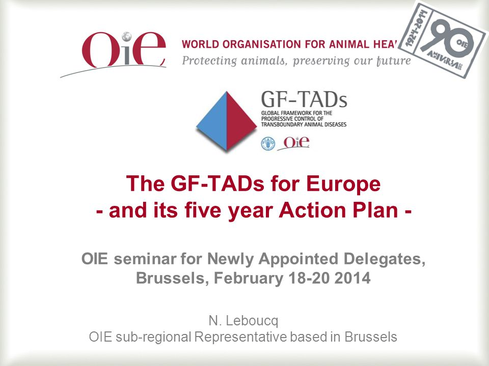 12 GF-TADs for Europe Action Plan 2012- 2016 Objectives: ─Facilitate collaboration and maximize synergies among the countries and stakeholders in Europe ─Prevent the occurrence and reduce potential impacts of animal disease events on human health, livelihoods and economies in Europe ─Promote adequate governance of Veterinary Services in accordance with OIE standards ─Ensure adequate funding to support implementation of disease prevention, detection and control activities, both in peace time and in crisis periods