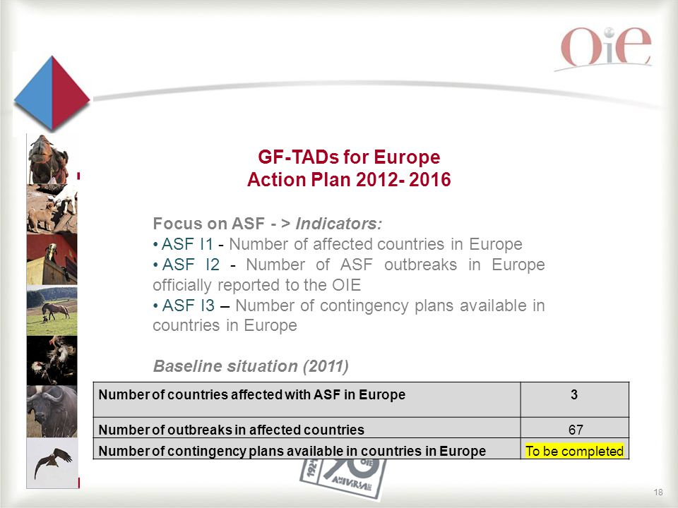 18 GF-TADs for Europe Action Plan 2012- 2016 Focus on ASF - > Indicators: ASF I1 - Number of affected countries in Europe ASF I2 - Number of ASF outbreaks in Europe officially reported to the OIE ASF I3 – Number of contingency plans available in countries in Europe Baseline situation (2011) Number of countries affected with ASF in Europe3 Number of outbreaks in affected countries 67 Number of contingency plans available in countries in EuropeTo be completed