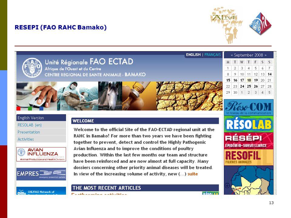 13 RESEPI (FAO RAHC Bamako)