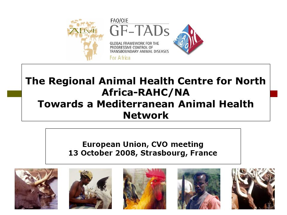 18 th Conference of the OIE Regional commission for Africa N'Djamena, February 22-26 2009 The Regional Animal Health Centre for North Africa-RAHC/NA Towards a Mediterranean Animal Health Network European Union, CVO meeting 13 October 2008, Strasbourg, France