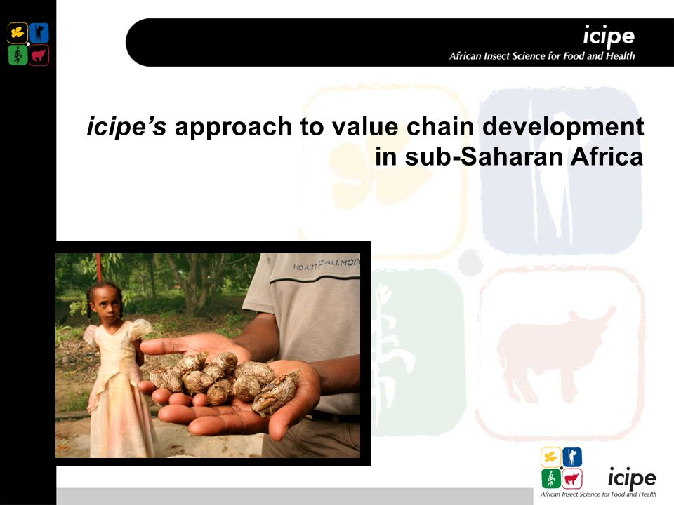 icipe's approach to value chain development in sub-Saharan Africa