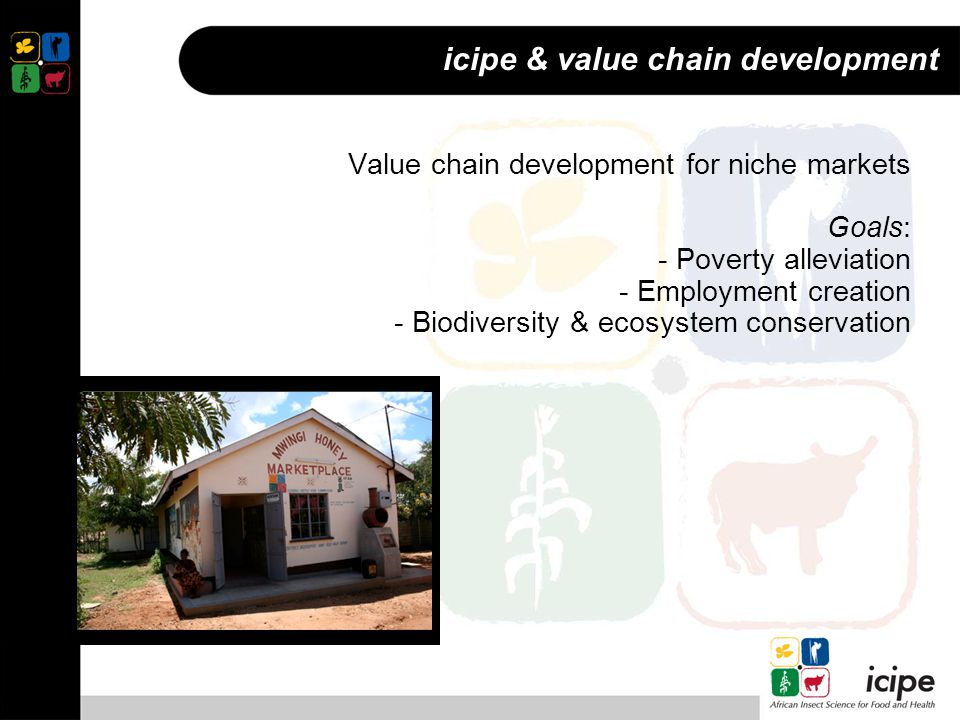 icipe & value chain development Value chain development for niche markets Goals: - Poverty alleviation - Employment creation - Biodiversity & ecosystem conservation