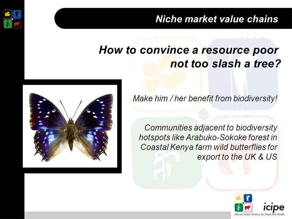Niche market value chains Make him / her benefit from biodiversity.