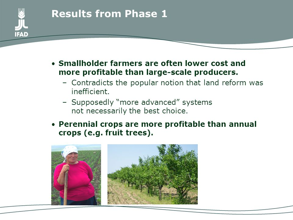 Smallholder farmers are often lower cost and more profitable than large-scale producers.