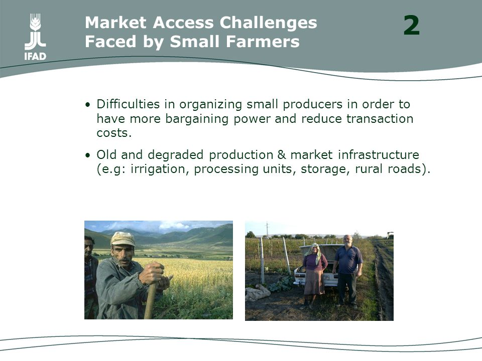 Difficulties in organizing small producers in order to have more bargaining power and reduce transaction costs.